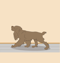 Dog in room vector