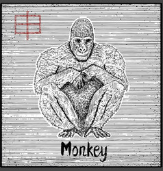 Engraved of zodiac symbol with monkey vector