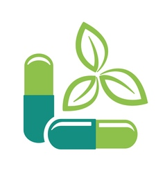 herbal pills vector image