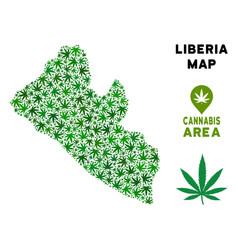 Marijuana collage liberia map vector