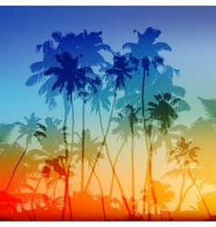 Palms silhouettes tropical sunset vector
