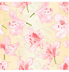 Seamless texture light pink blossoms rhododendrons vector