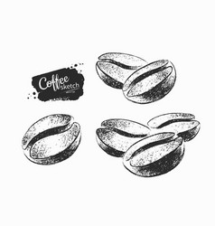 Set coffee bean vector
