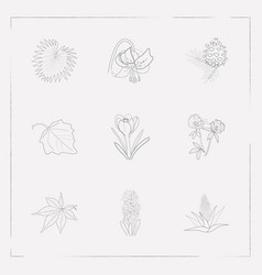 set of botany icons line style symbols with fir vector image