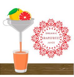 the theme grapefruit vector image