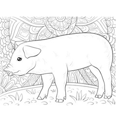 Adult coloring bookpage a cute pig on the vector