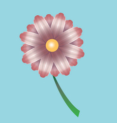 bright beautiful flower vector image