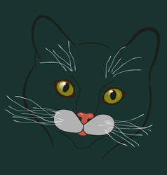 Cat contour vector image