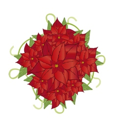 poinsettia flower 2 vector image