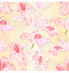 Seamless texture blossoms rhododendrons vector