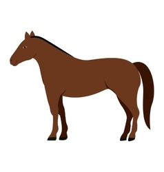 silhouette colorful with brown horse vector image