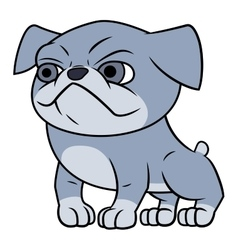 Bulldog puppy vector image
