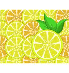 orange and lemon slices vector image vector image