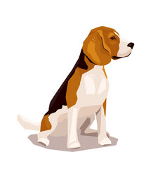 cute cool sitting beagle puppy dog vector image