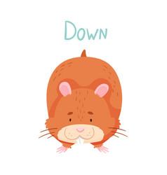 Cute hamster raising paws down demonstrating vector