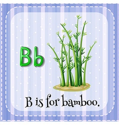 Flashcard letter B is for bamboo vector image