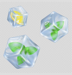 Ice cubes with mint leaves and lemon vector