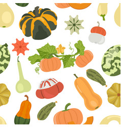 variety of pumpkins flat design seamless pattern vector image