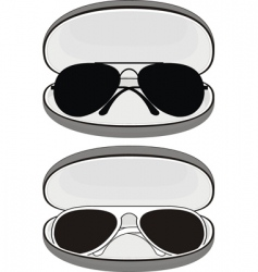 sunglasses in cases vector image vector image