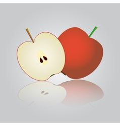 colorful apple eps10 vector image vector image