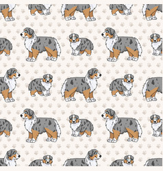 Hand drawn cute australian shepherd dog and puppy vector