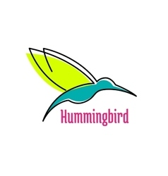 Little hummingbird bird abstract icon vector image