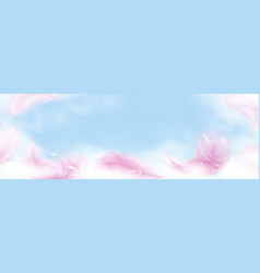 Soap foam with bubbles and pink feathers banner vector