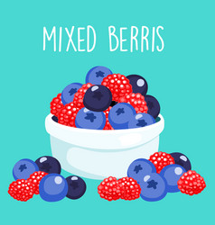 fresh mixed berries sprout in white bowl vector image vector image