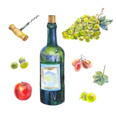 watercolor wine collection vector image