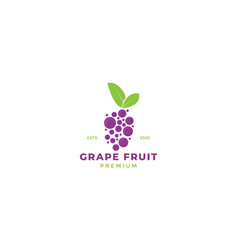 Abstract or colorful grape fruit with leaf logo vector