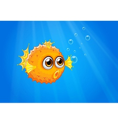 An ugly puffer fish in the ocean vector