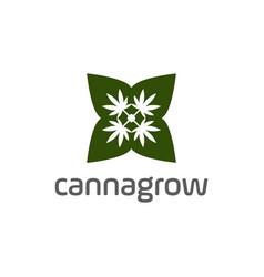 cannabis or cbd logo design vector image