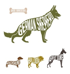 Isolated dog breed silhouettes set with names of vector image