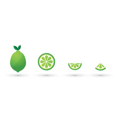 lime slice fruit abstract icon set vector image