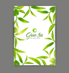 Template with a frame of green tea leaves vector