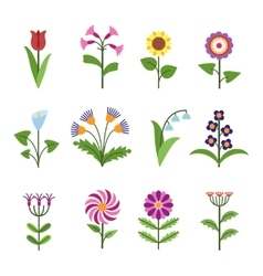 Stylized minimalistic flowers vector image