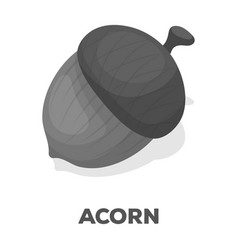 An acorn with a hatdifferent kinds of nuts single vector