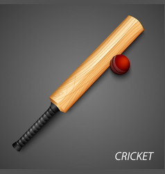 cricket background with bat and ball template vector image