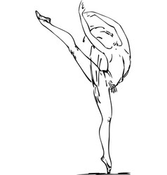dancing ballerina beautiful ink drawing on white vector image