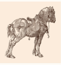 Horse with a saddle vector