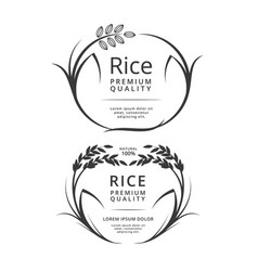 rice logo or label products vector image