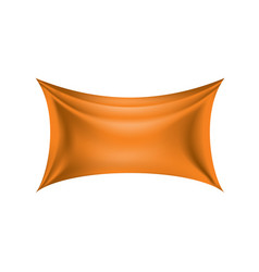 waving the orange flag on a white background vector image