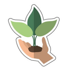 cartoon hand holding plant leaves vector image