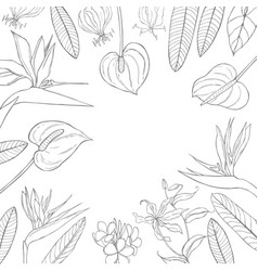 Background with hand drawn tropical flowers sketch vector