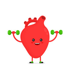 Cute happy smiling heart organ doing exercises vector