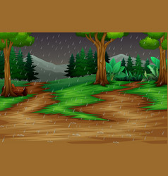 Nature scene with the rain in forest background vector