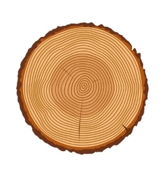 Tree trunk rings texture isolated vector