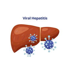 Viral hepatitis damages liver and viruses vector