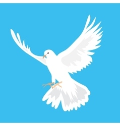 Beautiful white dove flying way up in a blue sky vector