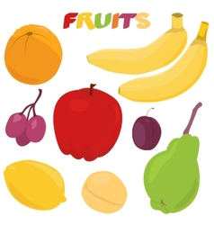 Cartoon fruit set vector image